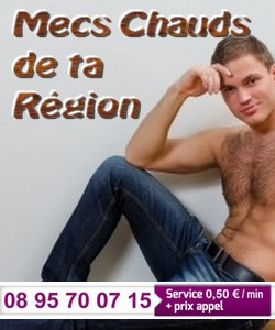 mecs-region-au-tel