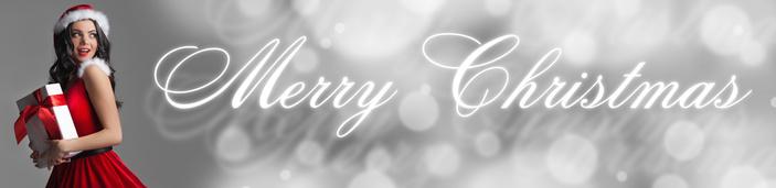 Joyeux Noël de toute l'équipe de xxxenligne.fr